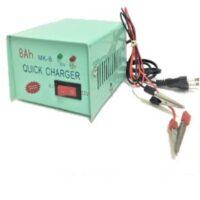 Φορτιστής μπαταριών μηχανής 6/12V 8A OEM